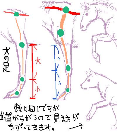 投稿イラスト講座馬の描き方2馬体の描き方バランス編不肖の弟